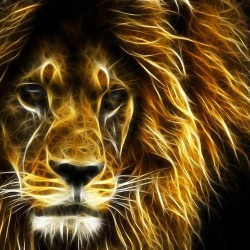 Lion Spirit - ARI