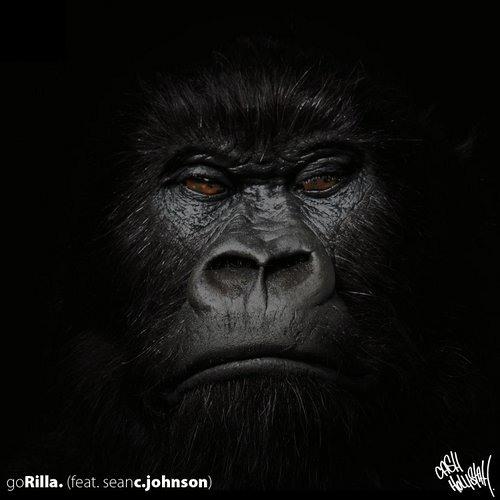"Cash Hollistah ""goRilla. (feat. Sean C. Johnson)"""