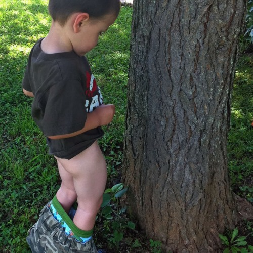 Tree.Pee