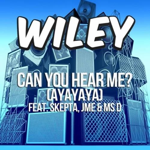 Wiley - Can You Hear Me (Dison Bootleg)