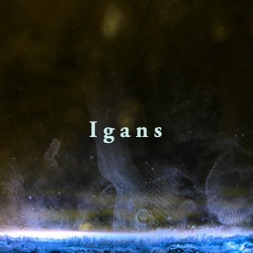 Igans - Mist
