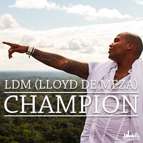 LDM-Champion