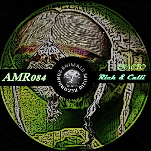 Rich & Calli - Chincolito (Original Mix) [Animals Muziq Recordings] OUT NOW