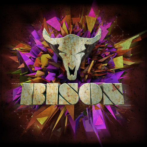 BISON - IN THE DARK