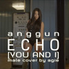 anggun - ECHO [YOU AND I] male cover by agie