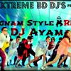 PSY- Gangnam Style (DJ Ayam Electro House Remix)