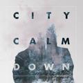 City Calm Down Sense of Self Artwork