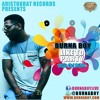 BurnaBoy-Like To Party