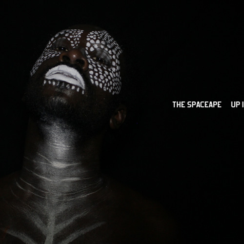 Spaceape - Up in Flames