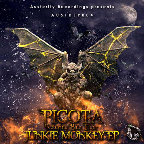 PICOTA - Monkey Fills ( Austerity Recordings ) OUT NOW!!!!
