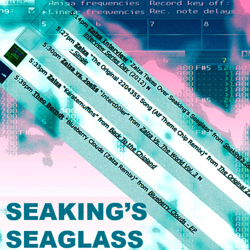 Interview with Zalza on Seaking's Seaglass (91.5 WUML Lowell)