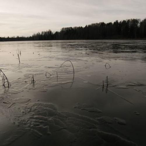 stone toss on ice, 4 octave comparison