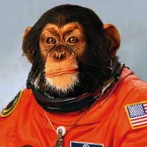 Space Monkey - Flipside Lab Sound