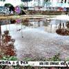 Il Crisa & G Pex - Pioggia Dorata feat. Strikkinino