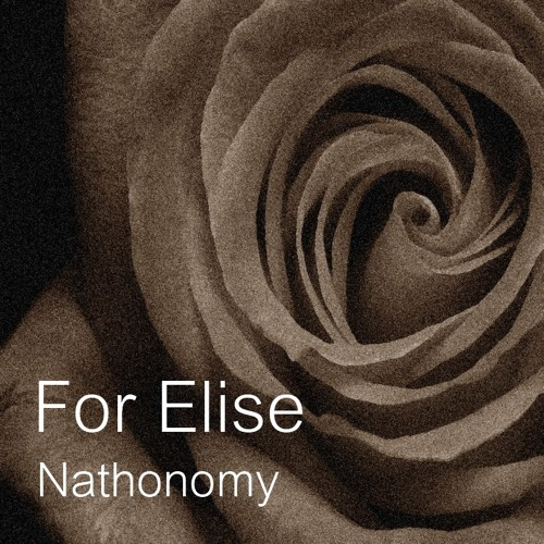 Nathonomy - For Elise