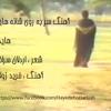 hayedeh-shanehayat-hayedeh-dariush