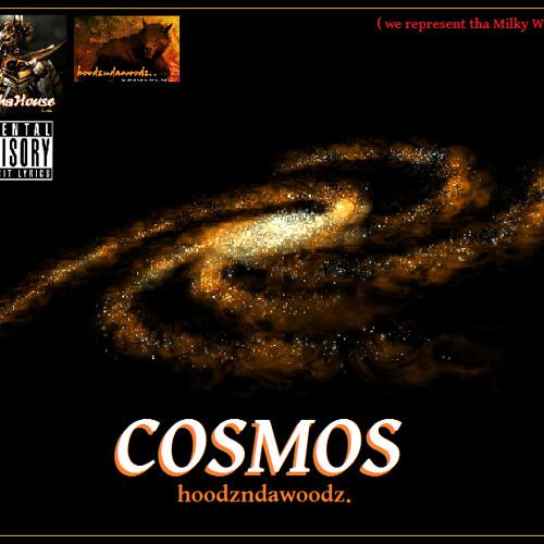 Cosmos - Hoodz N Da Woodz (prod.by SimonSez)