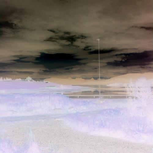 Arctic Dub
