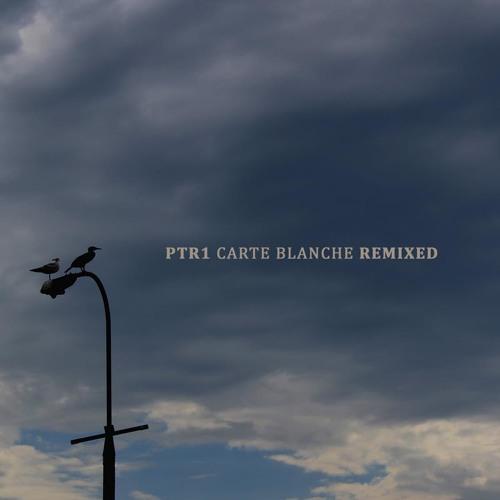 ptr1 - Carte Blanche (Artfruit Remix)