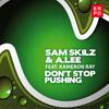 Sam Skilz & A. Lee  feat. Kameron Ray - Dont Stop Pushing (Original)