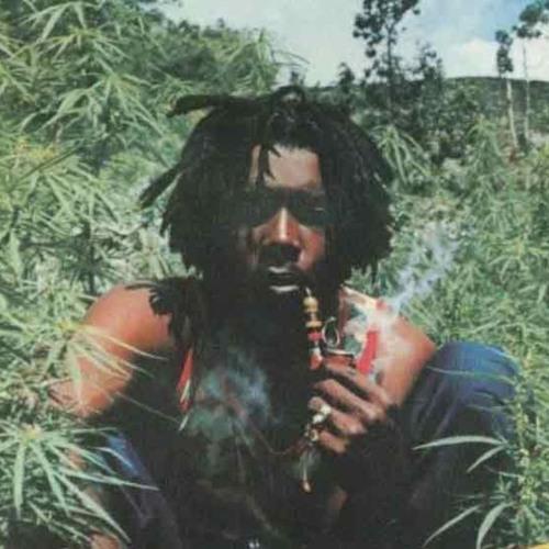 Reggae Dubstep Mix (2012)