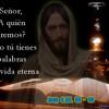 A QUIEN IRÉ- PADRE MARTÍN AVALOS Y MINISTERIO DEI VERBUM