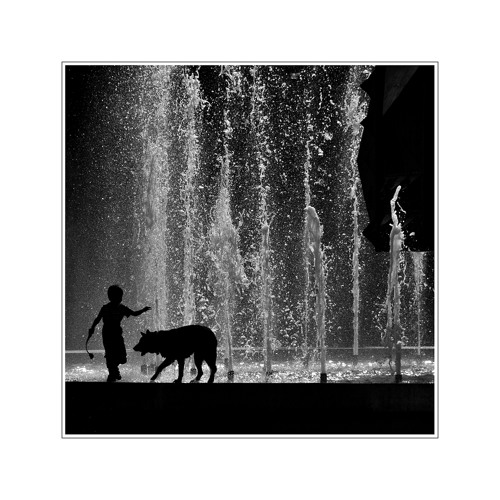 Christonia5 - XX diametral YY  [[Peter und der Wolf & the Rose ]]