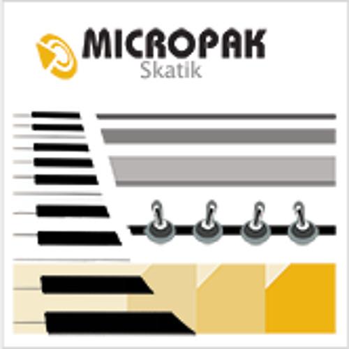 Skatik-Loops Beyond