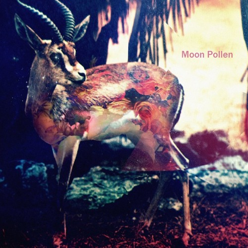 Moon Pollen - Gazela