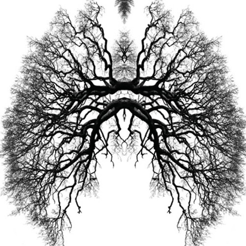 Breathe - Legit Spliff