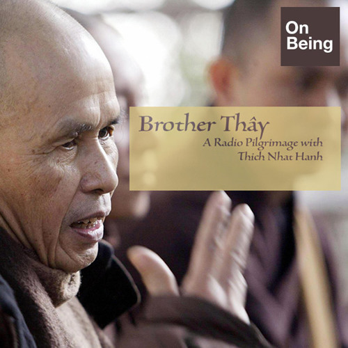 Mindfulness of Anger - Embracing the Child Within with Thich Nhat Hanh