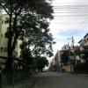MC MAX - O CRIME É VIDA LOKA, BONDE DO CUCO, TIPO COLOMBIA E PATRÃO DADAN [AO VIVO NA PICA PAU]