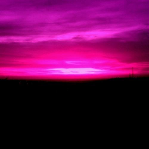 Purple Hearts Part IV