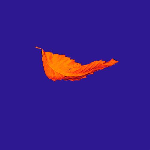 New Order - True Faith (Instrumental Edit)