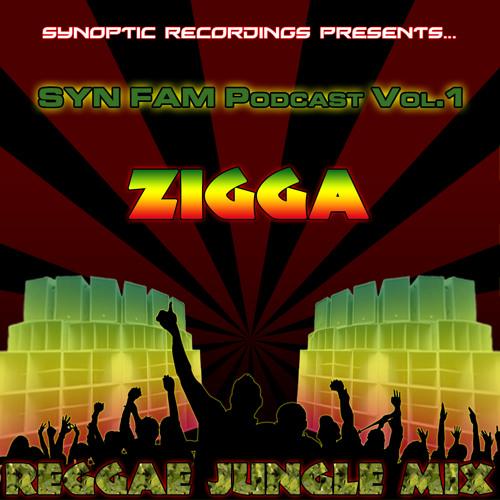 Reggae Jungle mix - Syn Fam Podcast 1