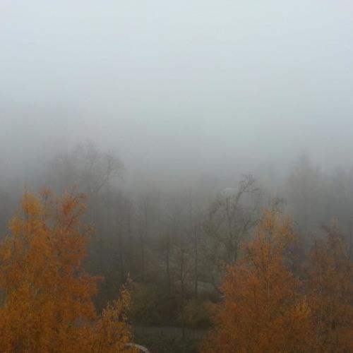 Leroy Young - Der Nebel unser Ende [Nov. 2012] //FREE DOWNLOAD//