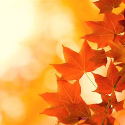 instrumental/spiritual house mix (Autumn/Winter 2012)