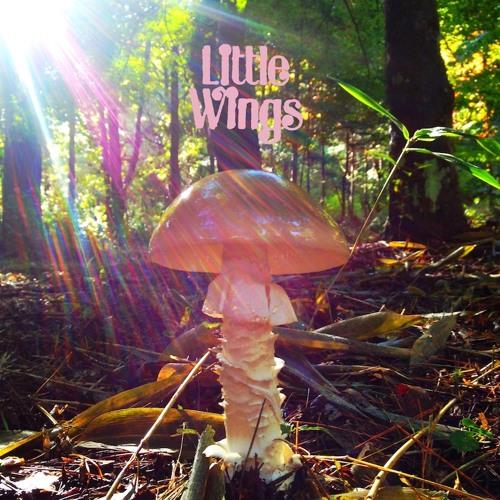 """Little Wings """"LAST"""""""