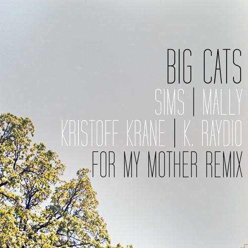 For My Mother remix (ft. Sims of Doomtree, MaLLy, Kristoff Krane and K. Raydio)