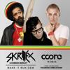 Skrillex & Damian Marley - Make It Bun Dem (Coone Remix)