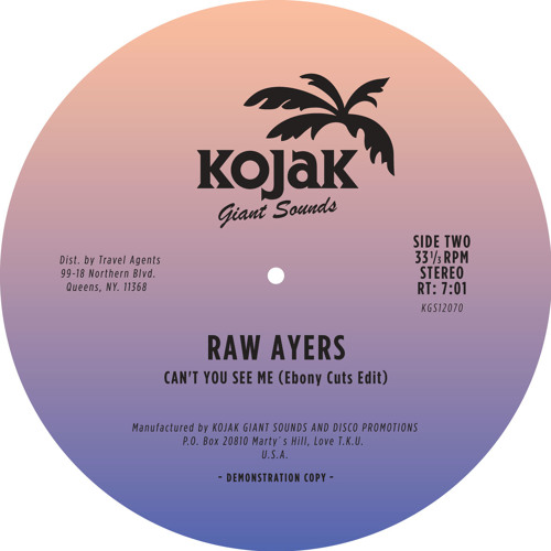 "Raw Ayers - ""Can't You See Me"" (Ebony Cuts Edit)"