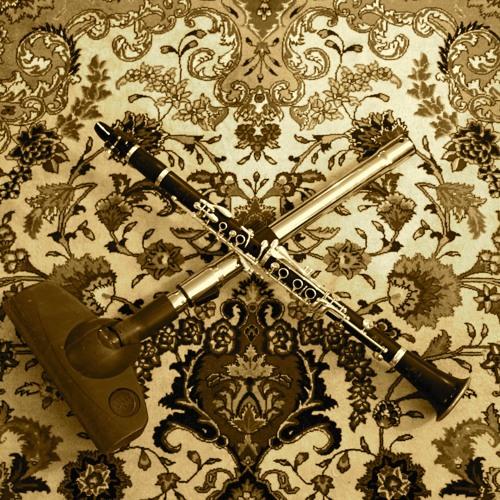 Duet for Clarinet and Vacuum Cleaner - Soheil Peyghambari