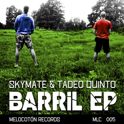 Skymate & Tadeo Quinto - Neriba (Original Mix) Melocotón Records MLC005 CUT