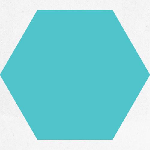 Turquoise Hexagon - No (clip)