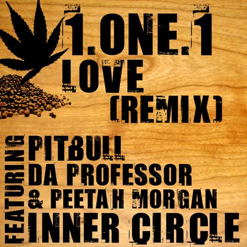 1.One.1 Love (Remix) by Inner Circle ft. Pitbull & Da Professor