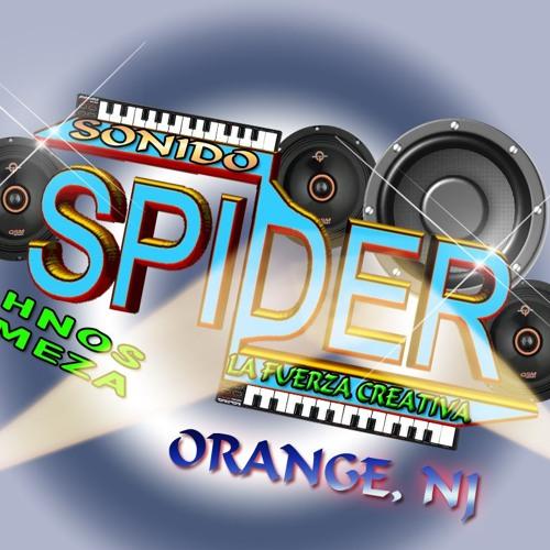 la cumbia callejera sonido spider en vivo