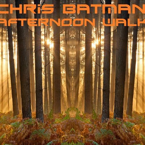 Chris Batman - Afternoon Walk