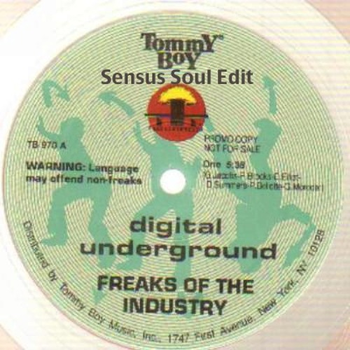 Digital Underground - Freaks Of The Industry (Sensus Soul Funk Lounge Edit)