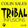 Colin Sales & S.U.Z.Y - On The Shore (Colin Sales Tribal Dub)
