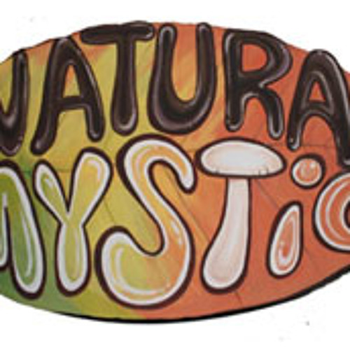 Patch - Enter the Natural Mystic (Bob vs Damian Marley & Nas)
